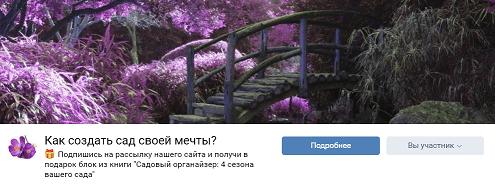 Мы в ВКонтакте, фото