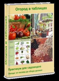 """Книга """"Практикум для садоводов"""", фото"""