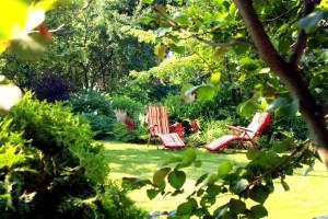 отдых в саду, фото