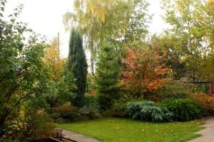 сад для отдыха, фото