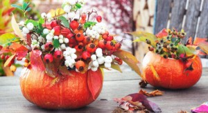 Октябрь в саду, фото