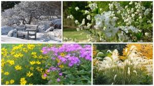 Цвета разных сезонов, фото