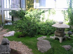 Японский зимний садик, фото