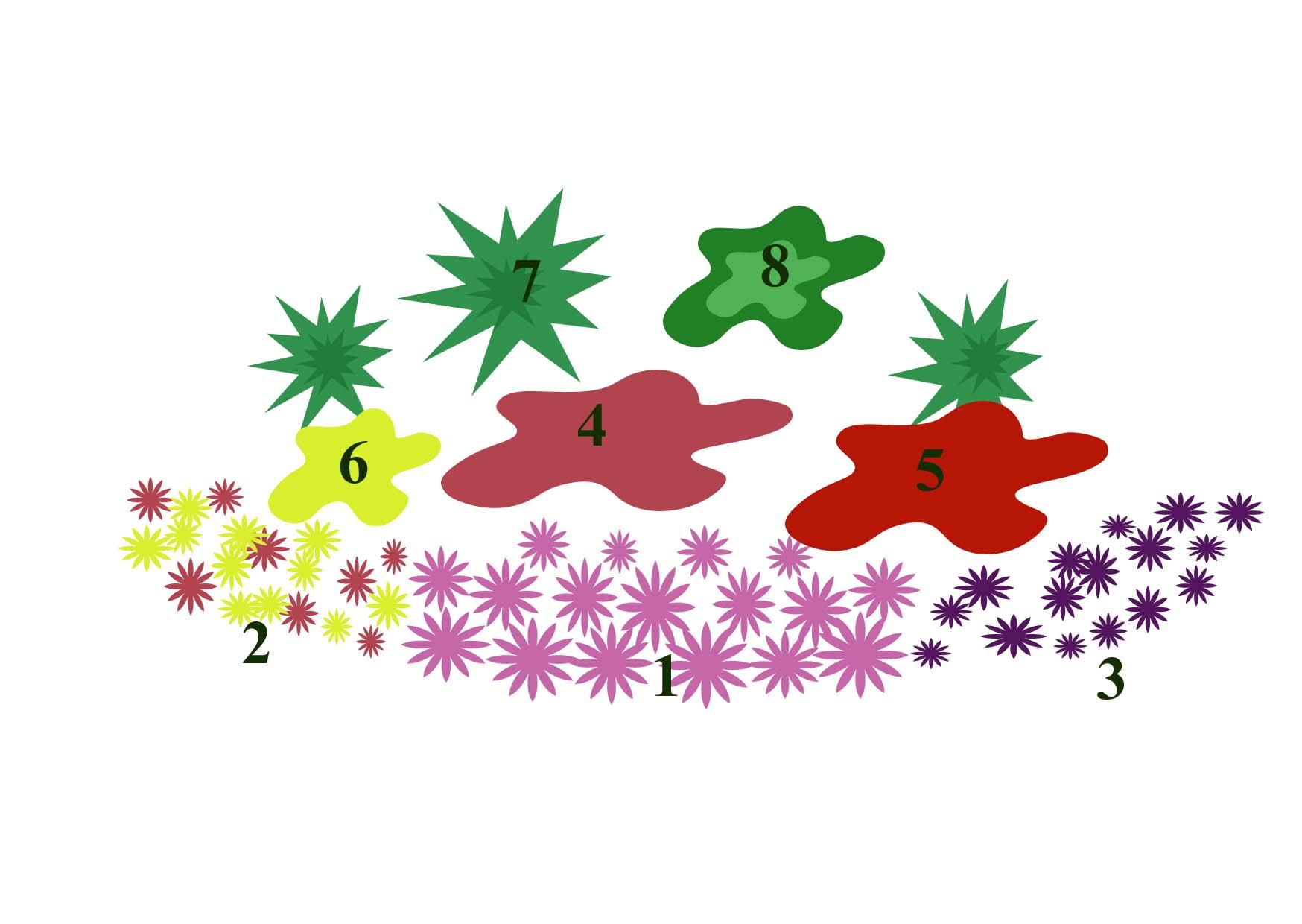 схема выращивания растения