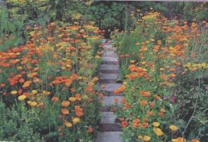 Дорожки в саду, фото