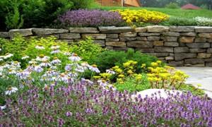 цветочная группа, фото