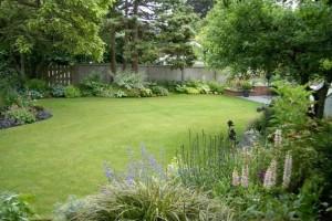 Идеальный газон, фото