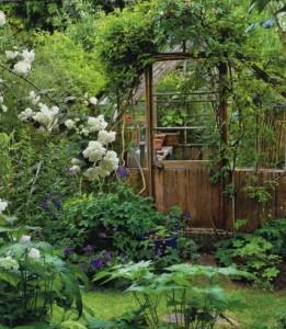 Клумбы в запущенном саду, фото