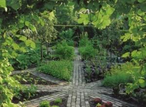 Как спланировать огород, фото