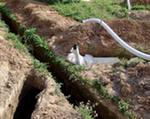 Дренаж садового участка, фото