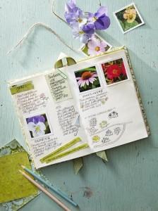 Дневник садовода, фото