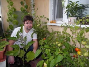 Огород на балконе, фото