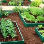 Устраиваем модульный огород
