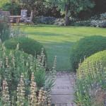 Как правильно выбирать растения для вашего участка
