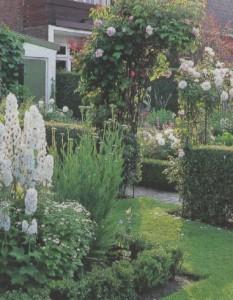Арка в саду, фото