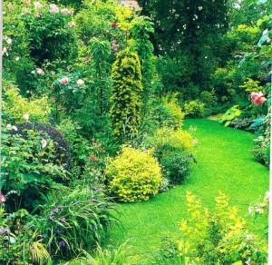 Цвет в небольшом саду, фото