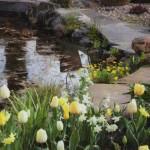 Готовим садовый водоем к зиме