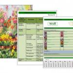 Цветочный календарь — заполняем вместе!