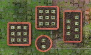 Терраса: план посадок на весну, схема