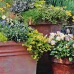 Весенний сад на террасе