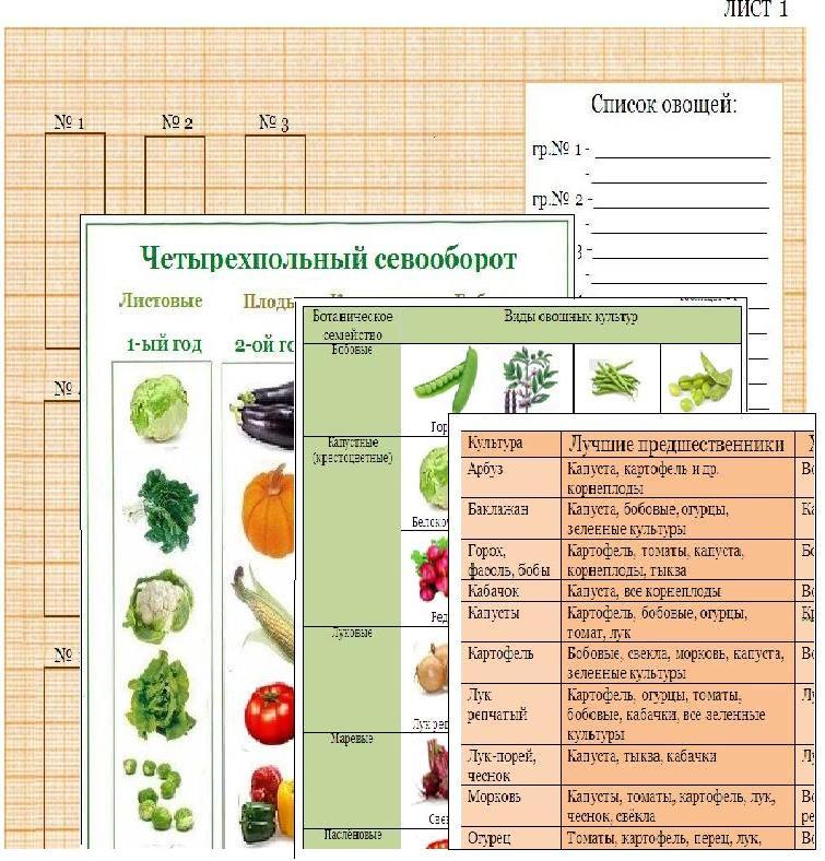 Список таблиц и схем в книге: