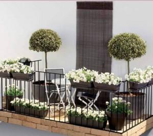 Садик на балконе, фото