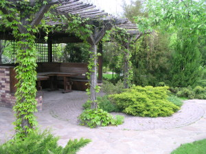 Как быстро заполнить сад растениями, фото