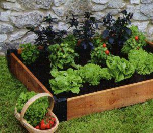 Модульный огород, фото