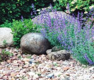 Мощения и площадки в саду, фото