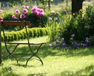 Красивый газон, фото