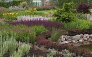 Тематический сад, фото