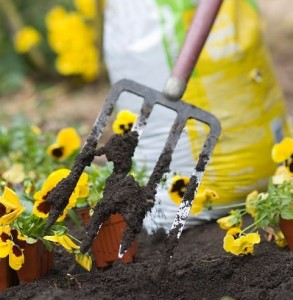 Уход за цветником, фото